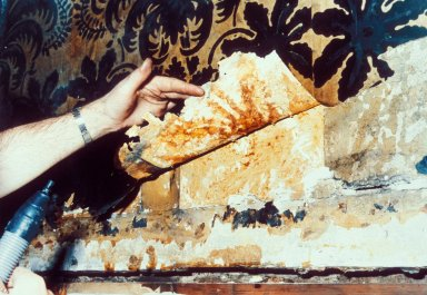 Conservator Removing Wallpaper