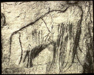 Pech Merle Cave: Mammoth