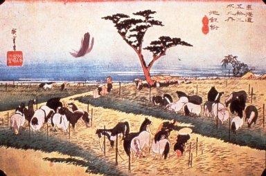 Tokaido: Chiryu Horse Fair