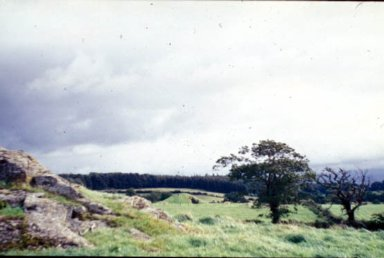 Chambered Burial Mound in Anglesea