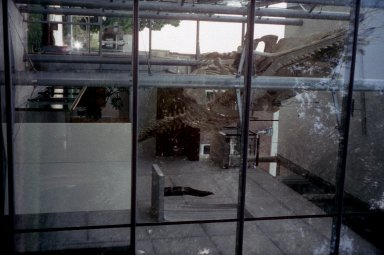 Natural History Museum Villa Dijkzigt: Extension