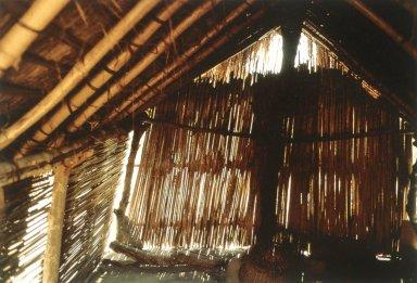Dwelling in Western Cameroon