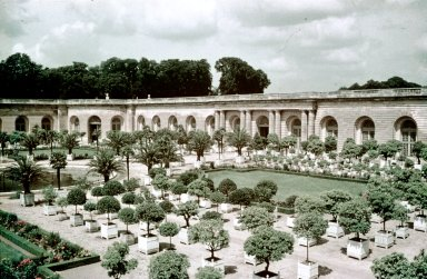 Versailles: Orangerie