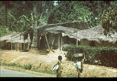 Settlement in Cameroon