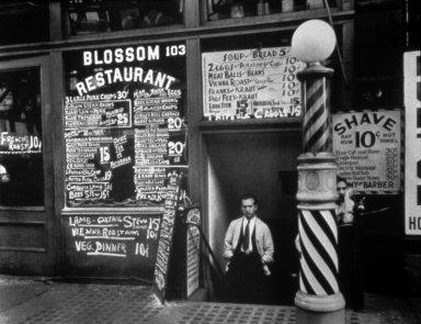 Blossom Restaurant, 103 Bowery