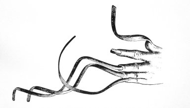 Chinese Ascetic's Hand with Long Curly Fingernails