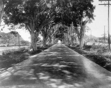 La Carretera Central