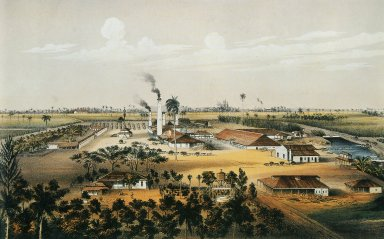 Tinguaro Sugar Plantation