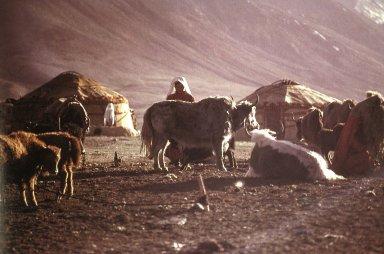 Pamir Kirghiz Encampment
