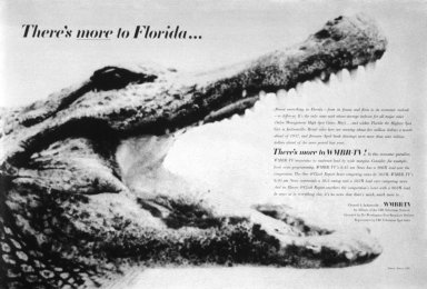 CBS Advertisement Campaign 'There's more to Florida'