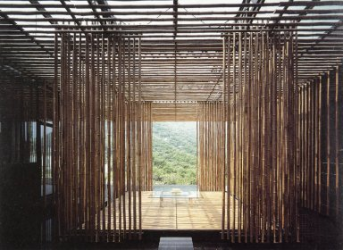Great (Bamboo) Wall