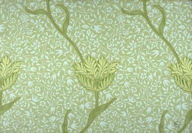 Garden Tulip Wallpaper Series: Green