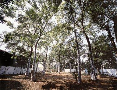 Hanegi Forest