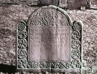 Gravestone of Thaddeus MacCarty