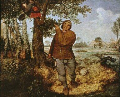 Peasant and Birdnester