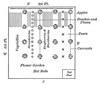 Plan of a Garden of Fruit and Vegetables