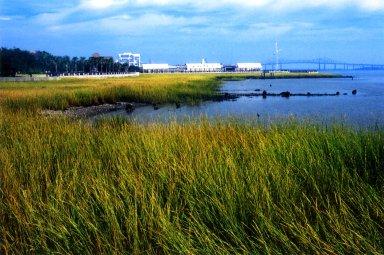 Charleston Waterfront