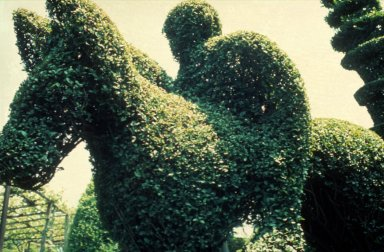 Classic Grotesque Topiary, U.S.A