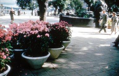 Str¿mparterren Park