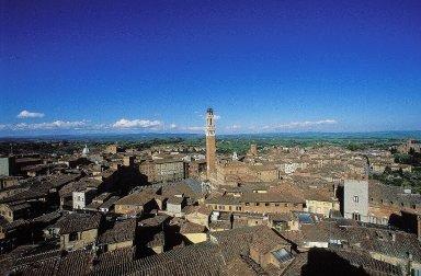 Piazza del Campo: Aerial and Topographic Views