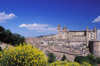 Urbino: Topographic Views