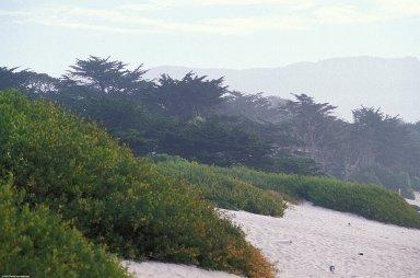 California Coast: Topographic Views
