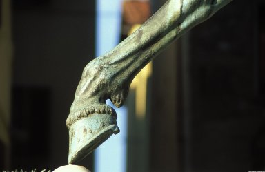 Equestrian Monument to Cosimo I de' Medici, Grand Duke of Tuscany