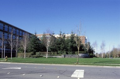 Microsoft Business Park