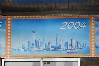 Pudong: Topographic Views Over Time [exhibit]