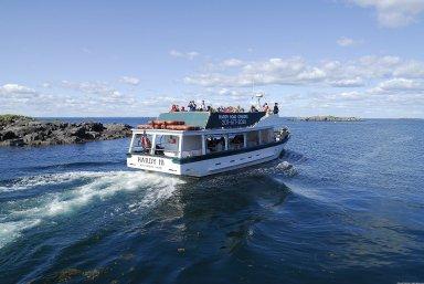 Monhegan Island: Topographic Views