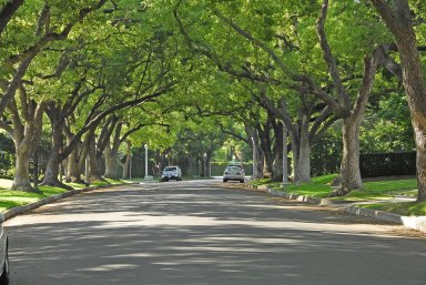 Entry Gates, Prospect Boulevard