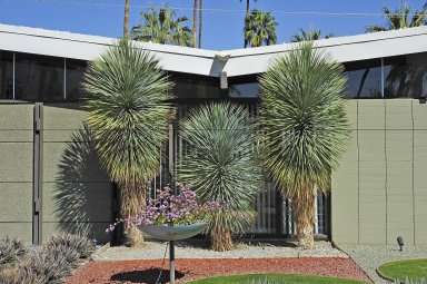"""1070 E. Apache Road, """"Alexander"""" home"""