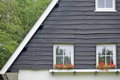 Dutch Thatched Roof Houses: Topographic Views