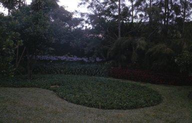 Garden of the Carlos Somlo Residence