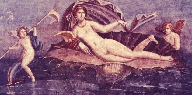 Venus on her Seashell