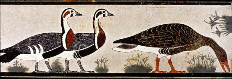 Geese of Meidum, from the Mastaba of Itel