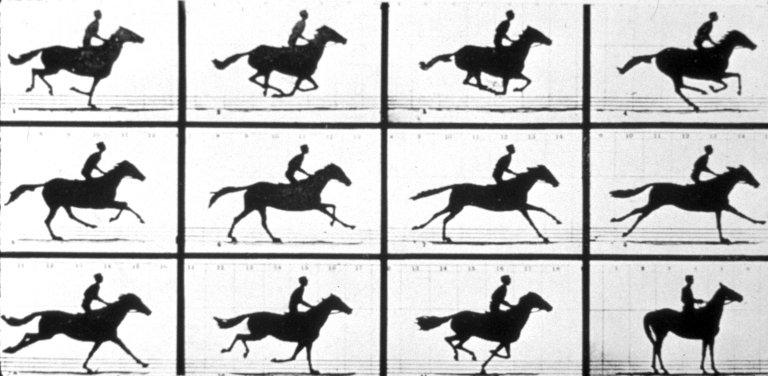Sally Gardner Running at a 1:40 Gait, 19 June, 1878