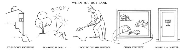 When You Buy Land