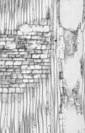ANNONACEAE Cyathocalyx polycarpa