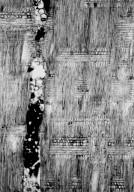 ANACARDIACEAE Astronium urundeuva