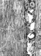CONVOLVULACEAE Humbertia madagascariensis
