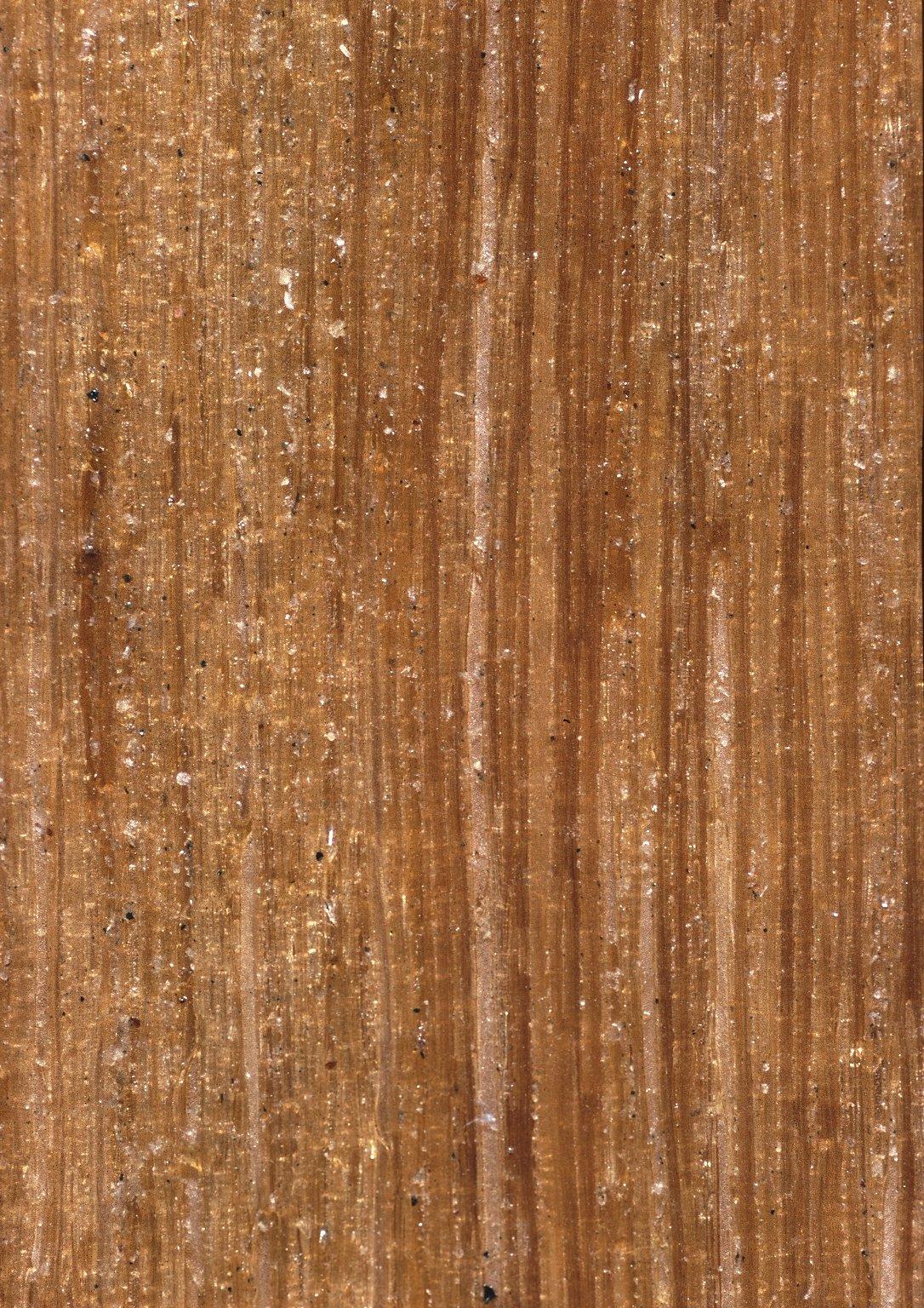 RUBIACEAE Posoqueria latifolia